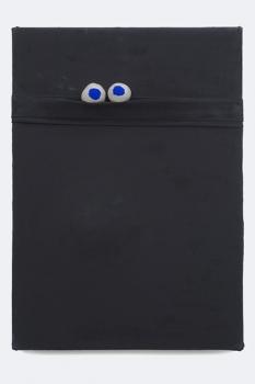 http://www.sarahpettitt.co.uk/files/gimgs/th-16_1_WEB_Black_Board_Blue_eyes.jpg